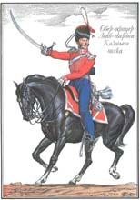 Русская армия, 1812, иррегулярные части