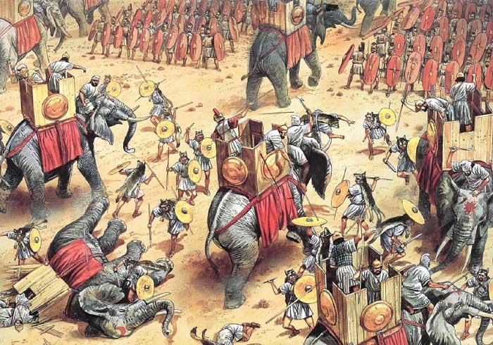 Битва при Заме - Нараггаре